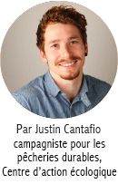 Justin Cantafio_Blog Author_FR