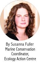 Susanna Fuller_Blog Author_EN