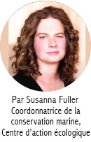 Susanna Fuller_Blog Author_FR